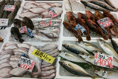 箱売りの魚