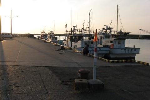 寺泊港での釣り