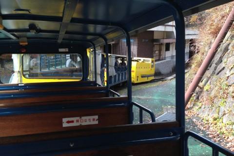 トロッコ電車からの風景