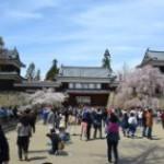 上田城に行ったよ