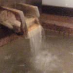 ホテルニュー塩原の温泉(日帰り入浴可)に入ったよ