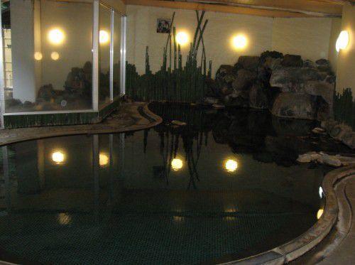 大浴場の内風呂