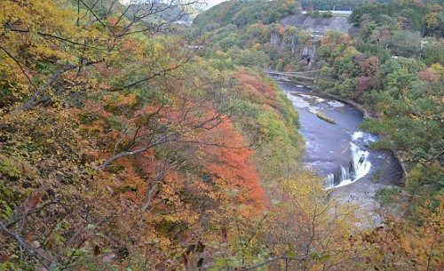 第一観瀑台から見えた吹割の滝と紅葉