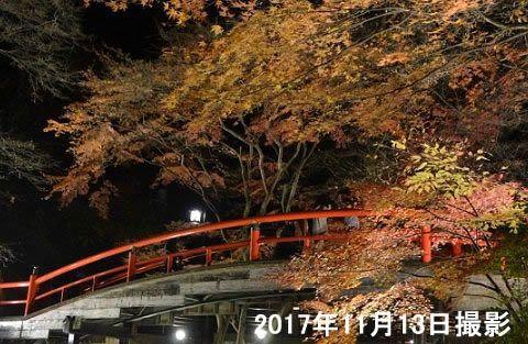 紅葉ライトアップされた河鹿橋