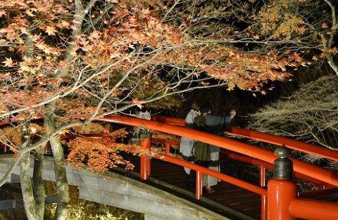 紅葉ライトアップの写真を撮る観光客