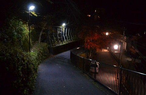 河鹿橋へ向かう夜道の様子