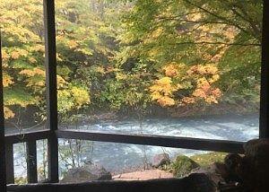 貸切風呂龍神の湯から見た景色