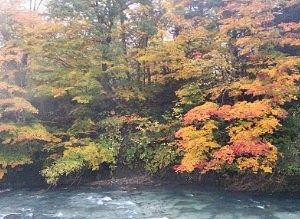貸切風呂から見えた紅葉の景色