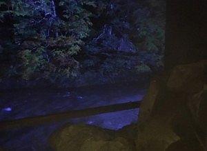 貸切風呂から見えた夜のライトアップされた景色