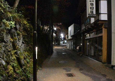 石段よる上の夜の遊歩道