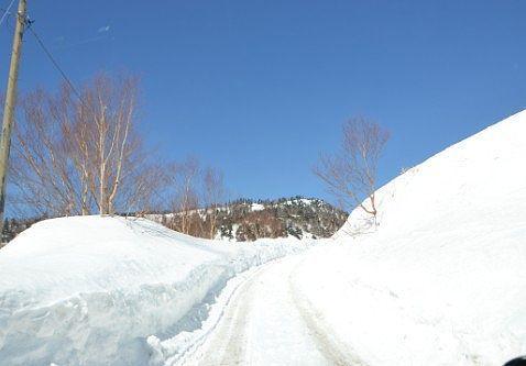 完全なる雪道になっていた真冬の道