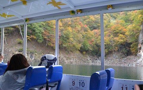 水陸両用バスから見た紅葉の景色