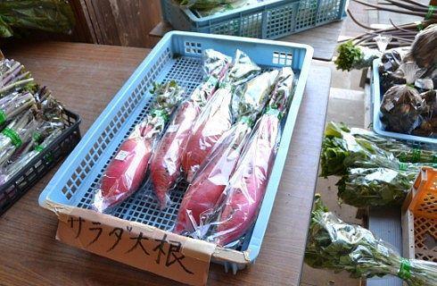 地元野菜の直売