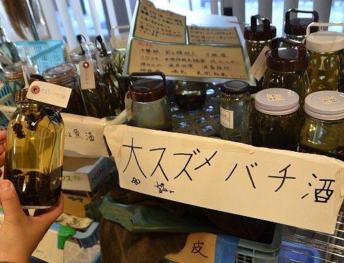 大スズメバチ酒の瓶