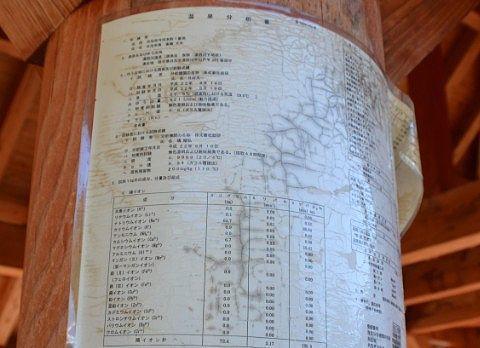 温泉成分分析書