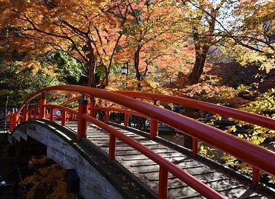 紅葉の河鹿橋
