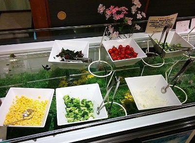 サラダ色々、ツナ、キヌア