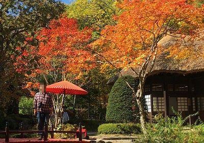 平家の里と紅葉と記念撮影