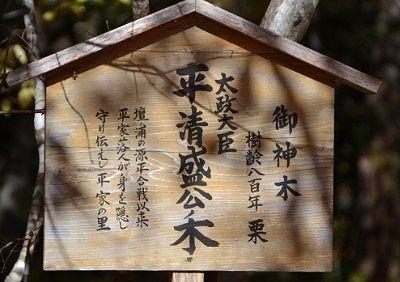 御神木平清盛公ノ木の案内看板