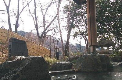 露天風呂に入浴しながらの景色