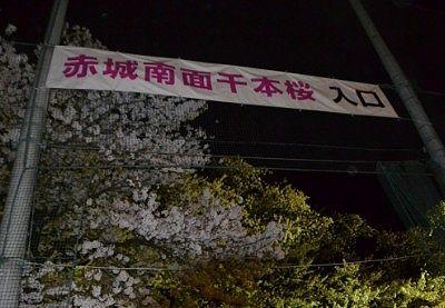 赤城南面千本桜まつり2018年夜桜会場入り口
