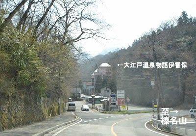 カーブ手前から見えた大江戸温泉物語伊香保の建物
