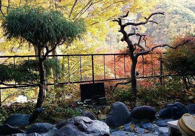 露天風呂からの景観
