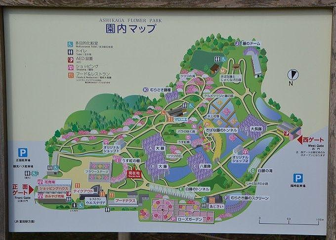 大藤まつり園内マップ