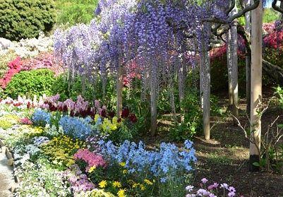 花が咲き乱れる園内の様子