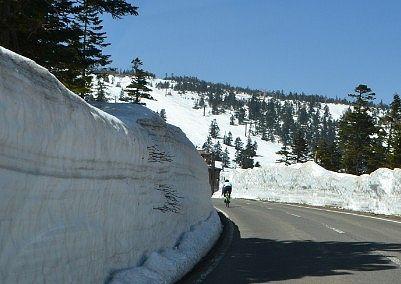 渋峠の雪の回廊