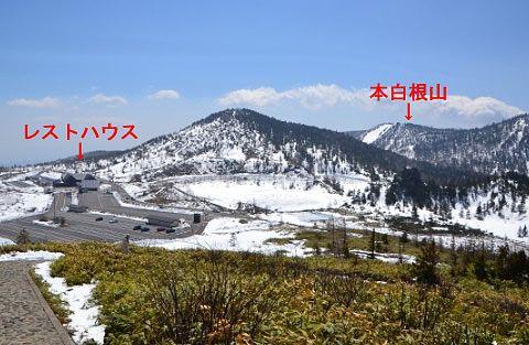登山道から見えた本白根山