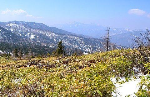 登山道から見えた景色