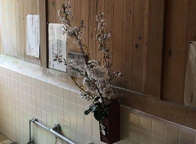 壁面に飾ってあった桜の枝