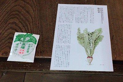 健命寺寺種子とリーフ