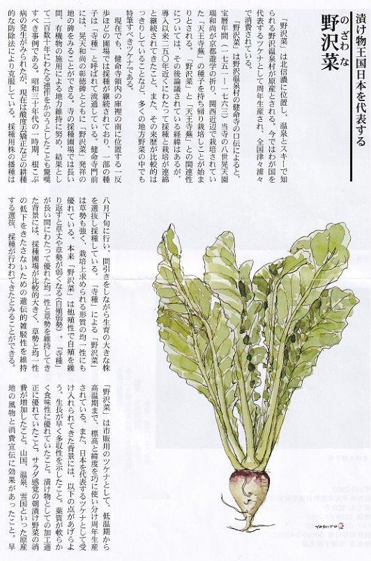 野沢菜のリーフ