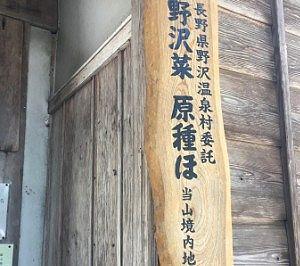 野沢菜原種の看板