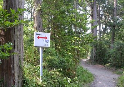 高津戸峡側の参道
