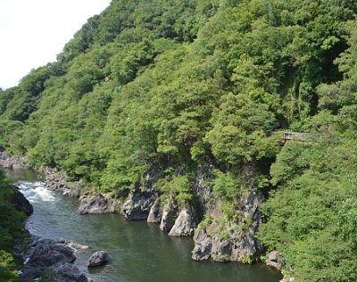 高津戸橋から見た渓谷の様子