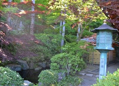 池のある日本庭園の様子