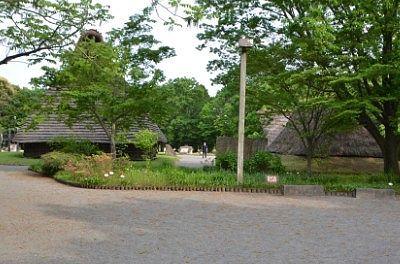 うつのみや遺跡の広場の様子