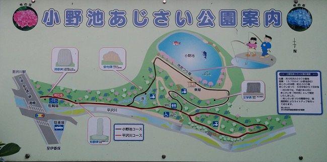 小野池あじさい公園の園内マップ