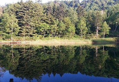 朝の牛池の水鏡