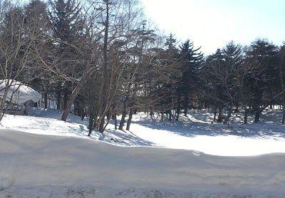 冬の牛池の様子