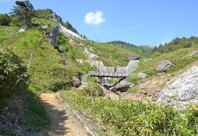 熊四郎遊歩道から山方向を見上げた景色