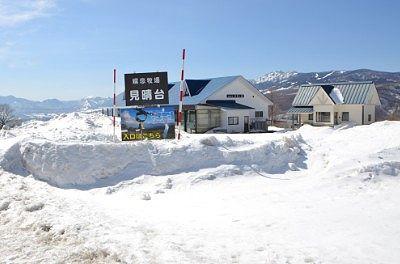 雪に埋もれてた嬬恋牧場