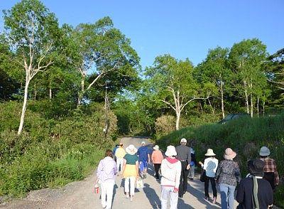 早朝散歩ツアーに参加して歩いてる人たち