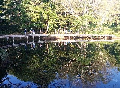 池の周りの遊歩道と水鏡