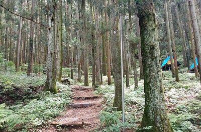 テントサイトへ行く登山道っぽい道