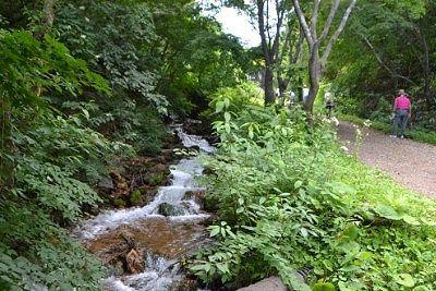 遊歩道脇を流れる川の様子