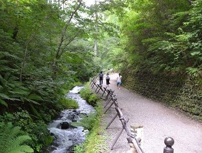 白糸の滝遊歩道の様子